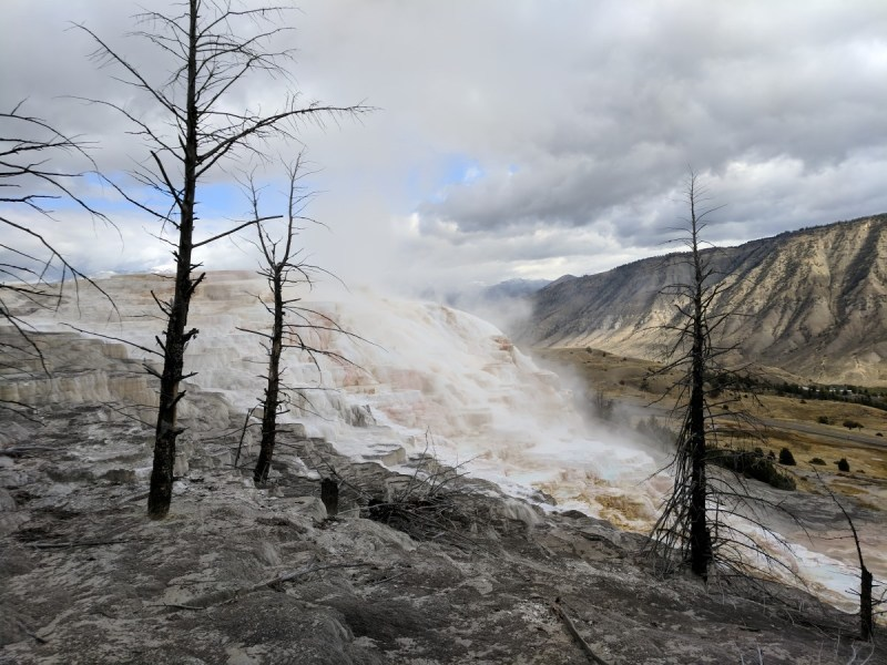 Yellowstone Mammoth Hot Springs 2