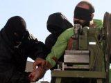 صدور حکم ضد انسانی قطع دست برای شش نفر در شیراز