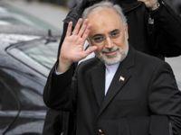 رئیس سازمان انرژی اتمی رژیم وارد وین شد