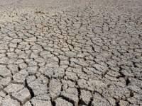 خشک شدن ۴ درصد هورالعظیم در ۵ روز گذشته