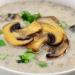gribnoy soup