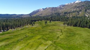 Meadows view of Tahoe ranch property.