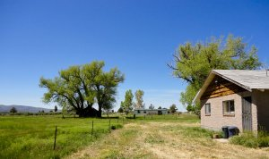The Spanish Springs Ranch is easily accessible year round directly off Highway 395.
