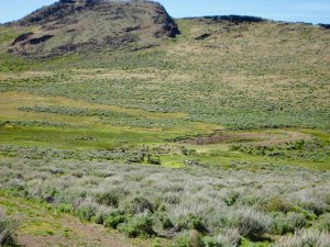 The Spanish Springs Ranch has two springs producing 15 - 18 GPM along with 3 domestic wells.