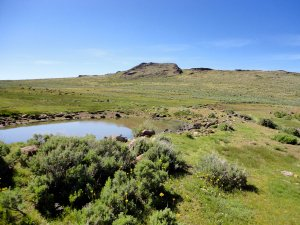 The Spanish Springs Ranch is approximately 349 acres with ponds and about 250 acres of lush meadows.