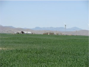 Lucio Hay Farms #3 consists of 560 acres with perimeter fencing and some cross fencing.