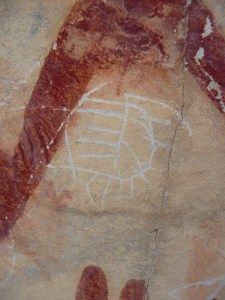 Mexico Hunting Ranch located in old Mexico with rock art and fossils.