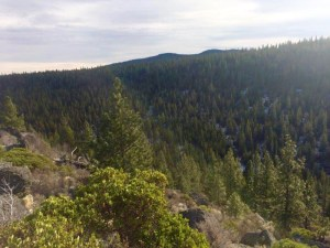 Oregon Forest Land Ranch is located approximately 10 miles north of Silver Lake off Hwy 31 at mile post 33.