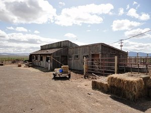 Woodward Ranch is located in the Quinn River Valley northwest of Winnemucca, NV.