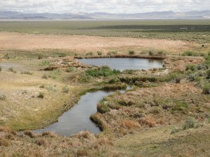 Woodward Ranch deeded ground is surrounded by BLM land.