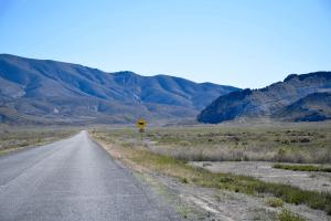 Similar land in the area has been selling for around $400 per acre, this is a bulk sale at a discounted price.
