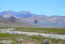 Income Generating Land Northern Nevada ~ SOLD