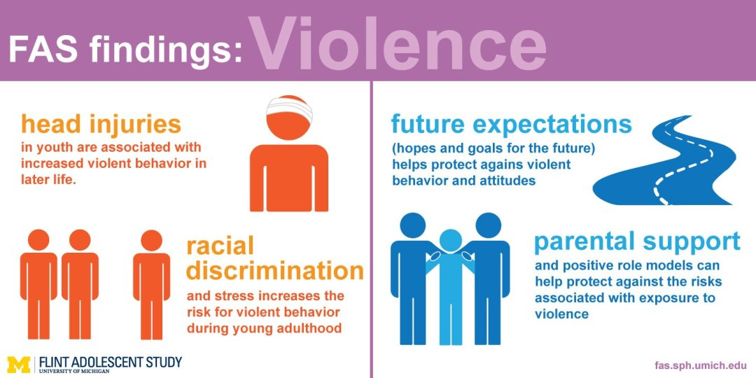An image of the violence findings infographic