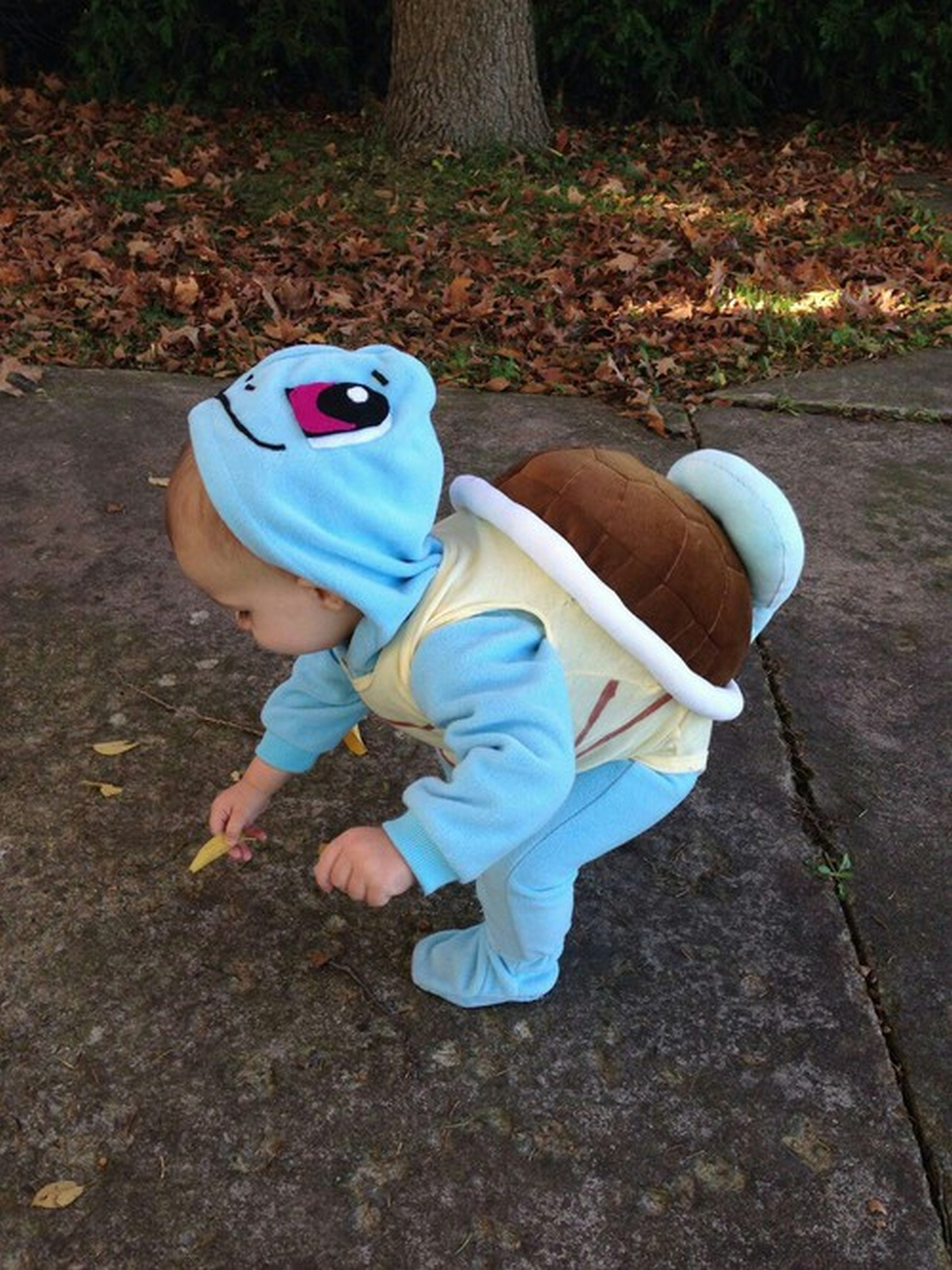 Cute baby animal costumes (11)