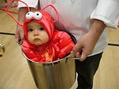 Cute baby animal costumes (19)