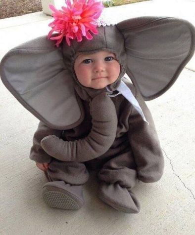 Cute baby animal costumes (91)