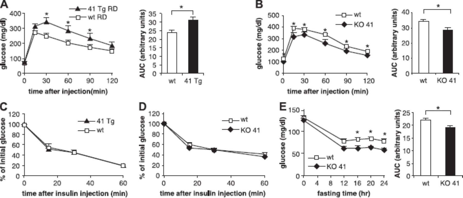GPR41 modulates insulin secretion and gene expression in