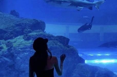 暗い館内でも映えるのは?水族館デートにおすすめの大人かわいいコーデ