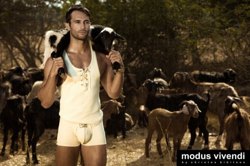 Modus Vivendi Shepherd line 03