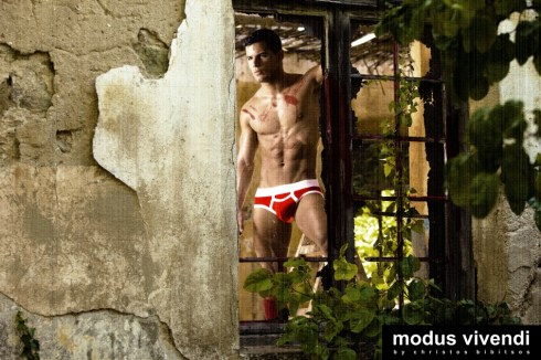 Modus Vivendi Painter line 03