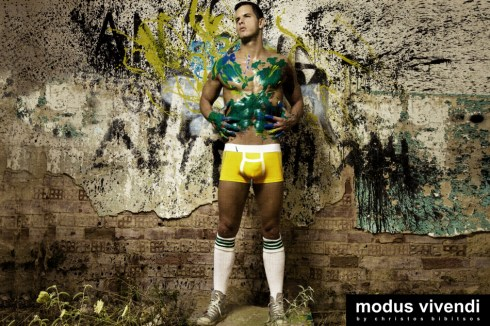 Modus Vivendi Painter line 06