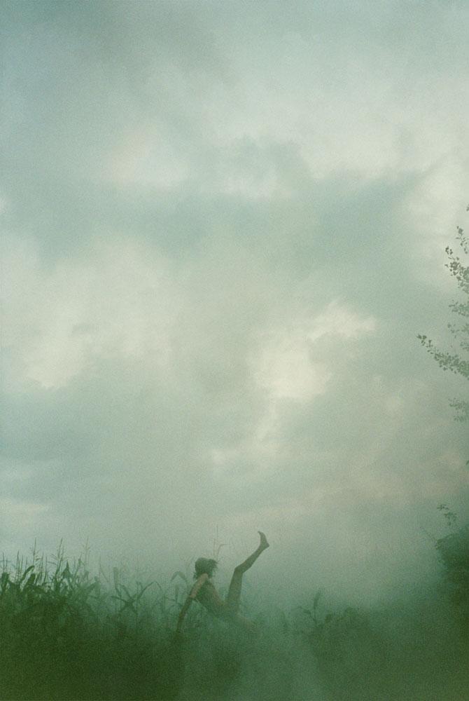 Falling (Cornfield) 2007