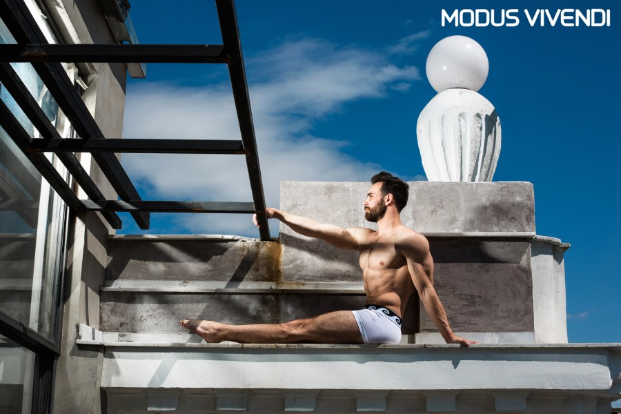 Modus Vivendi Iconic Line with logo (5)