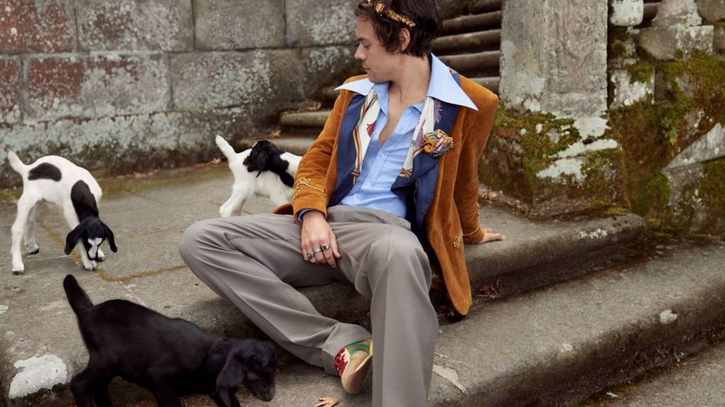 Harry Styles Returns in a New Tailoring Campaign for Gucci