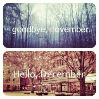 144114-Goodbye-November..-Hello-December