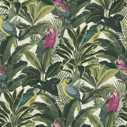 exotic-bird-pink-wallpaper-homebase-image