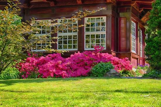 garden-2275465_1280
