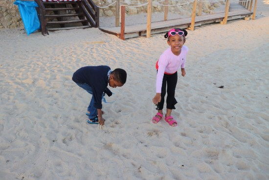 Kids on the beach image