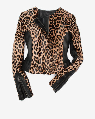 alc-leopard-savile-jacket
