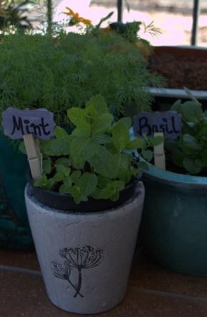 Homemade garden signs