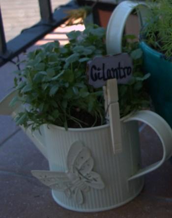 Diy herb labels