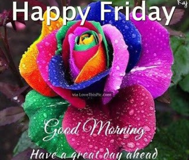 Best Good Morning Friday Images And Quotes For