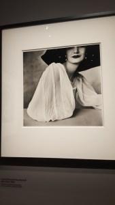 Irving Penn @ Grand Palais, Paris - Sunny Harnett