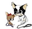 Dsquared2-for-DOGS-on-www.fashiondailymag.com-brigitte-segura1