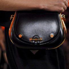 HERMES spring 2012 bag FashionDailyMag sel brigitte segura ph valerio nowfashion