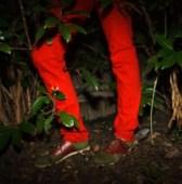 RALEIGH DENIM spring peony orange jeans FashionDailyMag sel 2 brigitte segura