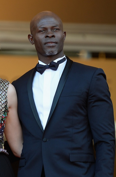 Djimon Hounsou how to train your dragon 2 FashionDailyMag