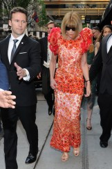 anna wintour Met Gala 2015 Fashiondailymag sel 1