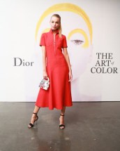 daphne-groenveld-art-of-color-dior-fashiondailymag