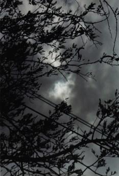 Wolfgang Tillmans, Eclipse 2-3, 1998