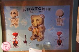 Anatomie Gummi @ Canadian Special Events EXPO Opening Party - Unexpected