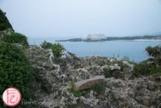 view from Cape Manzamo