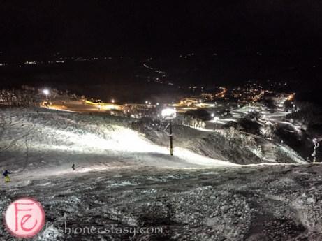 Niseko ski resort mountains in snow