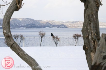 crow at Lake Toya in winter snow