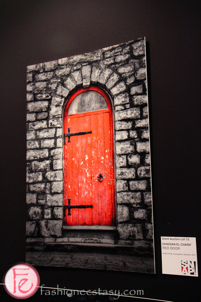 snap art auction and gala 2015