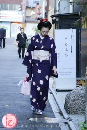 maiko in ponto-cho kyoto
